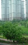 Green Seoul