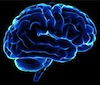 Sciences of human understanding