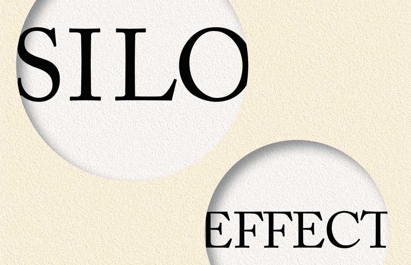 silo effect in organisation